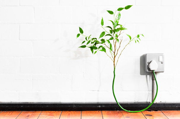 Engage at Ecobuild 2011